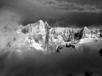 LWD Steiermark: Saisonbilanz und Fotowettbewerb
