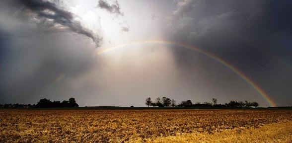 August 2012: Ungewöhnlich warm, stellenweise viel Regen