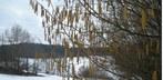 Frühlingsbeginn: einer der kältesten der Messgeschichte