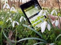 Frühwarnsystem für Nutzpflanzen