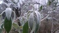 Häufigkeit von Frost im April