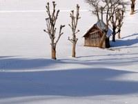 Klima im Februar 2012: Extreme erste Hälfte