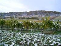 Seltenes Ereignis: Schnee im Oktober