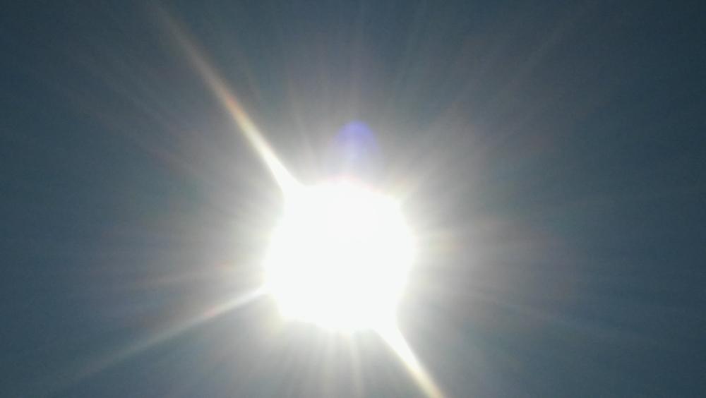 Ungewöhnliche Hitzewelle und Trockenheit