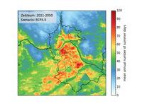 Wie man Hitze in Städten vermindern kann