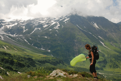Was Hummeln auf Bergwiesen mit Flammschutzmitteln zu tun haben