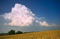 Auswertung Hitzetage / Regionale Warnsysteme
