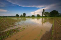 Extremer Dauerregen geht zu Ende