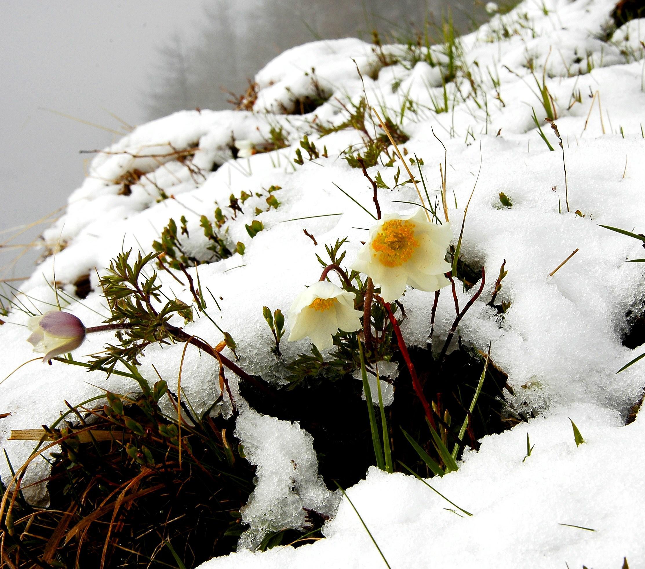 Kühles Wochenende und Schnee bis in die Täler