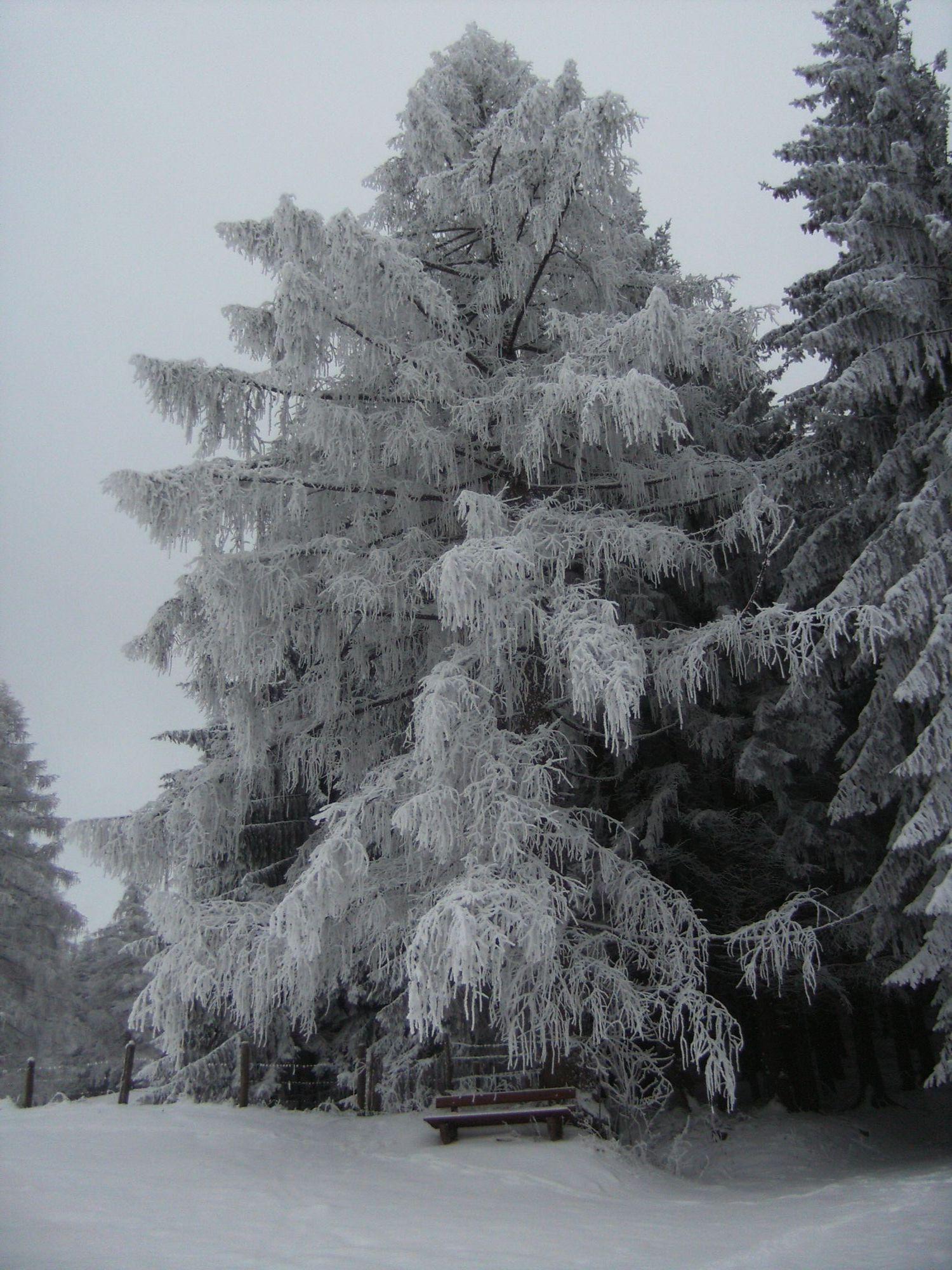 Schnee, Wind und Kälte