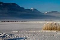 Weissensee: Wetterstation direkt am Eis